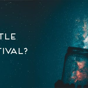 How do you bottle a festival?
